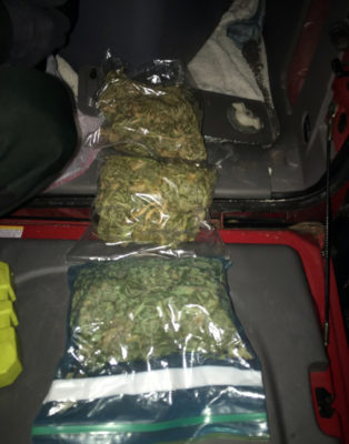 Campers Arrested with a Pound of Marijuana, LSD, and Ecstasy