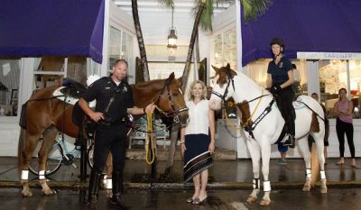 Missed the Party? It's Ok. You Can Still Help Jane Gardner Support the KWPD Mounted Police Unit Horses