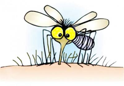 Environmental Groups Send Reps to Washington to Probe FDA About GM Mosquito Release