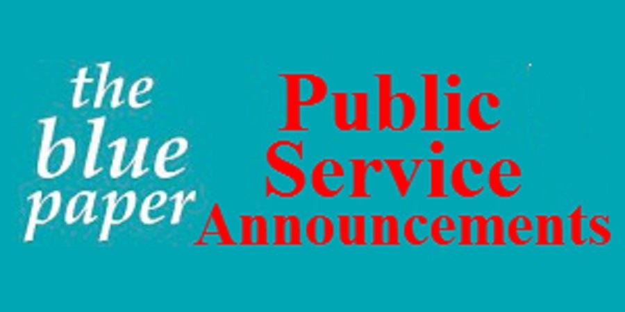 Essay on public service announcement