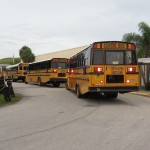 busses resized