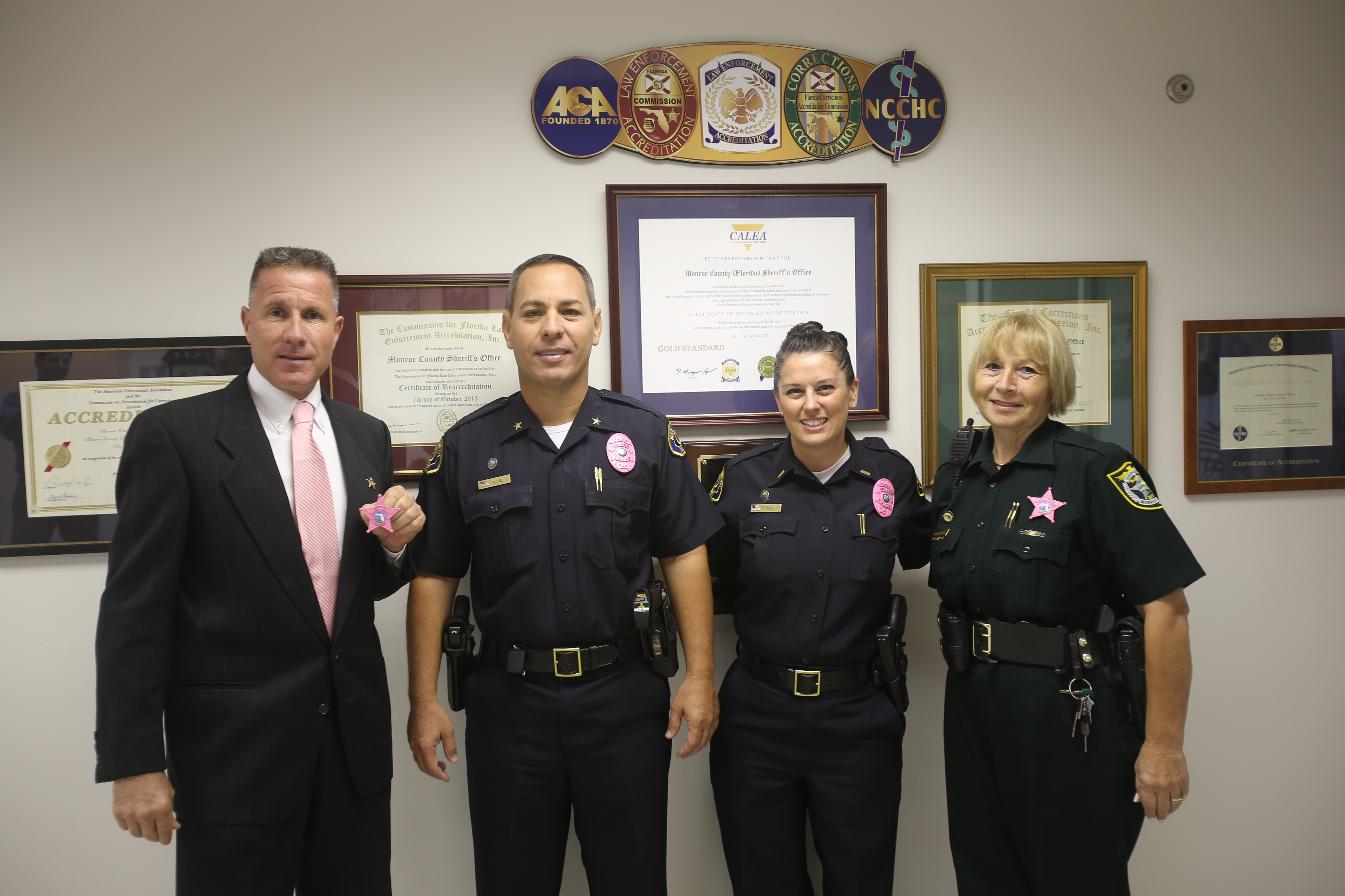 2016-breast-cancer-pink-badges