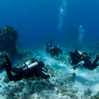 Keys Firm Working with FKCC Acquires National Diving Program Certification