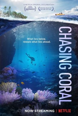 Coral Documentary to Premiere in the Florida Keys