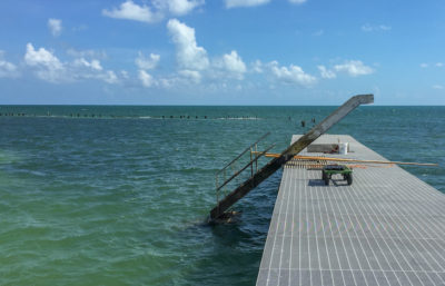 Project Update:  Rehabilitation of the Reynolds Street Pier