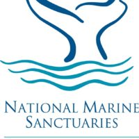 Sanctuary Seeks Advisory Council Applicants
