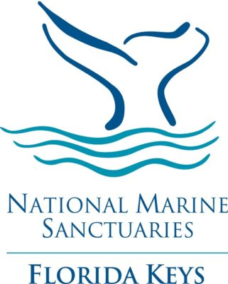 Sanctuary Seeks Advisory Council Applicants
