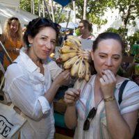 Tropical Fruit Fiesta