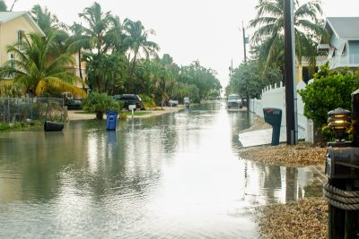 King Tides Causing Nuisance Flooding in Low-Lying Areas of Monroe County