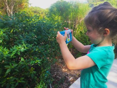 A Cure for What Ails You:  Engage with Nature and Creativity During the Third Annual Florida Keys National Wildlife Refuges Outdoor Fest