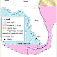 Hogfish Conservation Measures and Boundaries Set