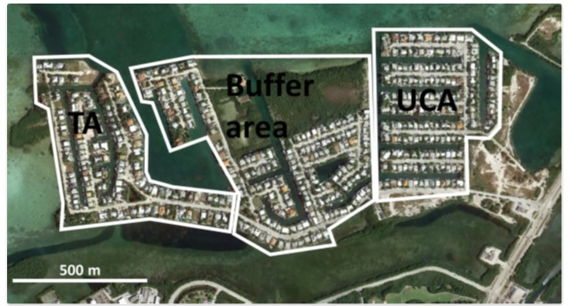 "The community of Key Haven, in Key West Florida, is targeted by the FDA and Oxitec for release of genetically engineered mosquitoes in the ""treated area"" (TA). This amounts to human and ecological genetic experimentation with a potentially dangerous organism. While the FDA and Oxitec provide detailed data on mosquitoes, and the populations of snails, birds and more, they treat the ""human population"" as an afterthought in their report clearing the experiment for implementation."