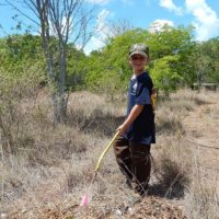 Go Native:Landscape Choices that Support Wildlife and Weather the Storm