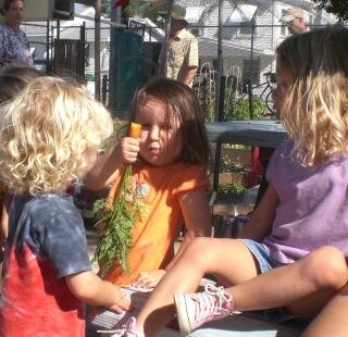 Community Garden Key West