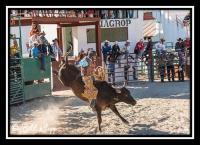 A Gringo's Peek Into a Cubano Rodeo