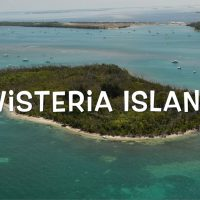 Wisteria Island: Hell or Paradise? [video]