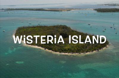 Wisteria Island: Hell or Paradise?